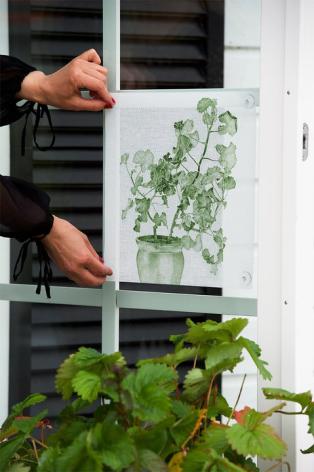 Fönsterskydd Grön Pelargon