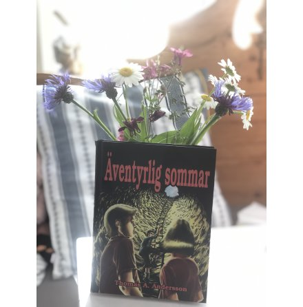 Bok Äventyrlig sommar