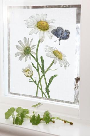 Fönsterskydd