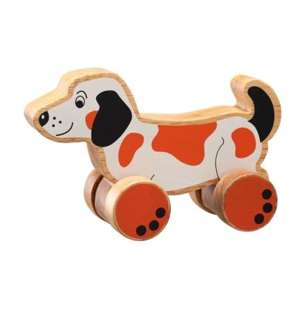Hund på hjul