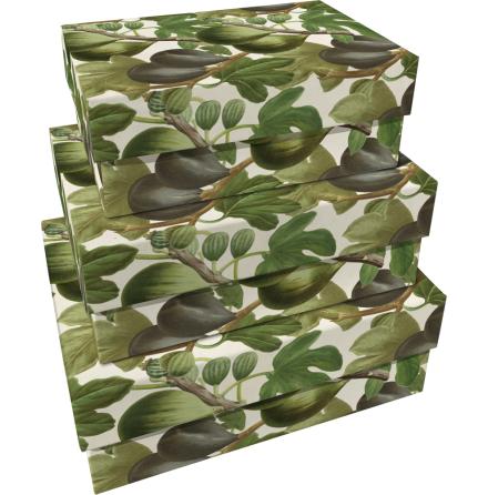 Pappersbox - fikon