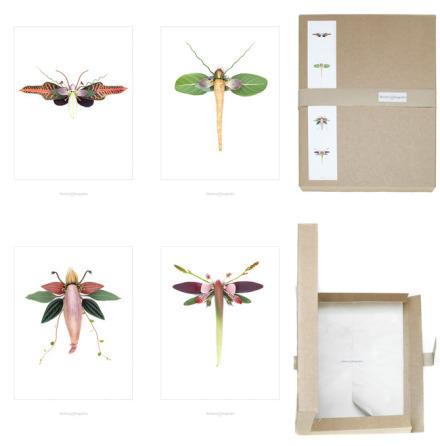 Bildbox insekter