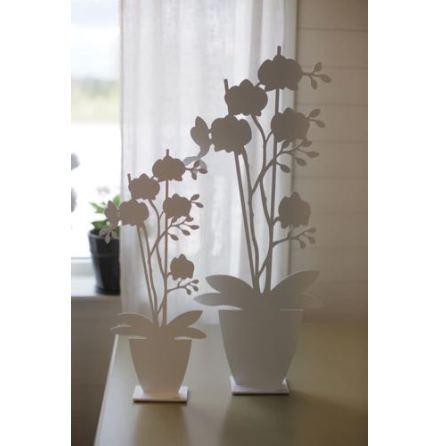 Dekorationblomma Orkidé